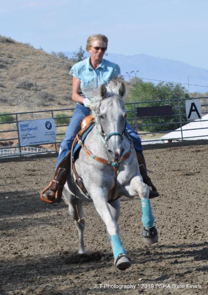 Patterned Speed Horse Association Western horse games Home